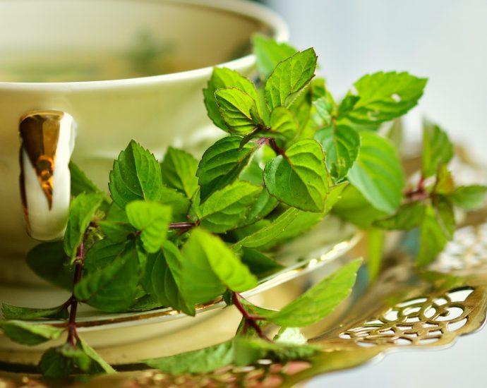 Los mejores remedios naturales para la gastroenteritis